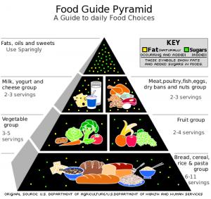 Food_Pyramid-2